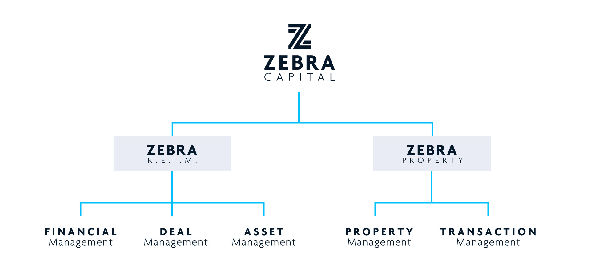 schema-zebra-capital_BIS